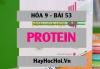Protein tính chất hóa học, trạng thái tự nhiên, thành phần cấu tạo và ứng dụng của Protein - Hóa 9 bài 53